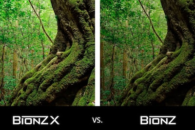 Giant redwood image with moss and BIONZ X logos